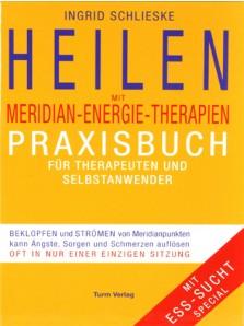 buch heilen meridian energie